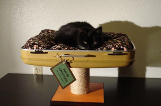 upcycled-cat-bed-made-from-suitcase-537x356.jpg
