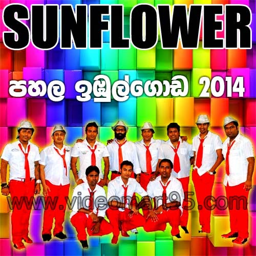 SUNFLOWER LIVE IN PAHALA IMBULGODA 2014