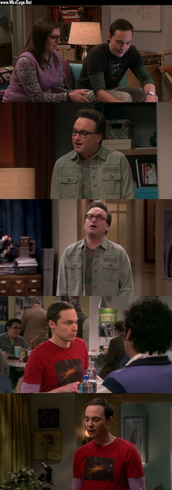 The Big Bang Theory S06E08 HDTVRip 720p