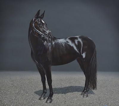 caballos-pinturas-hiperrealistas-corceles-finos-al-oleo