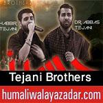 http://www.humaliwalayazadar.com/2013/06/shabbir-and-abbas-tejani-nohay-2007-2013.html