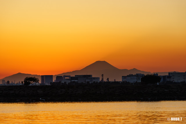 夕暮れ時の富士山~葛西臨海公園
