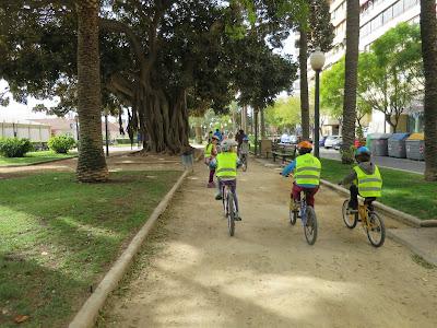 En bici al sorolla, árboles monumentales