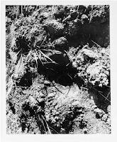 UFO Landing Site Photo at Gwinner, N.D. (pg 3)