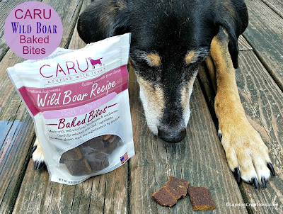 senior rescue dog caru wild boar treats