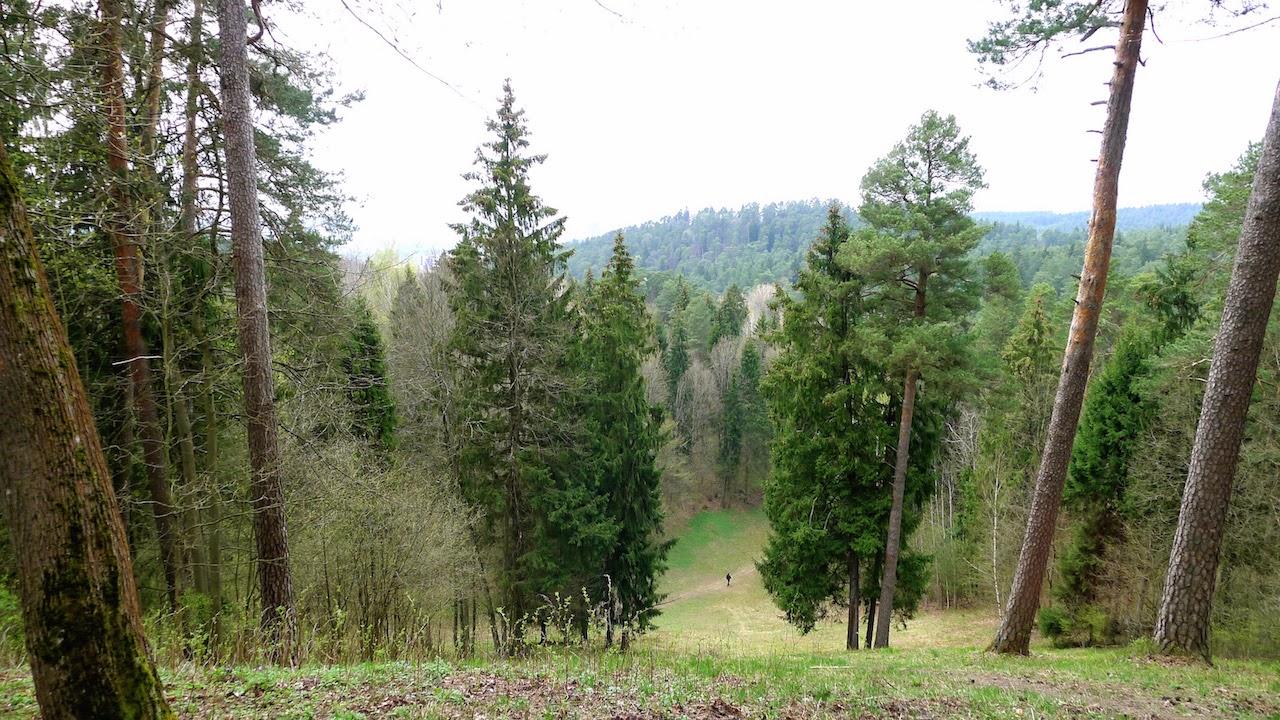 Vaizdas nuo aukštos kalvos Sapieginėje pavasarį