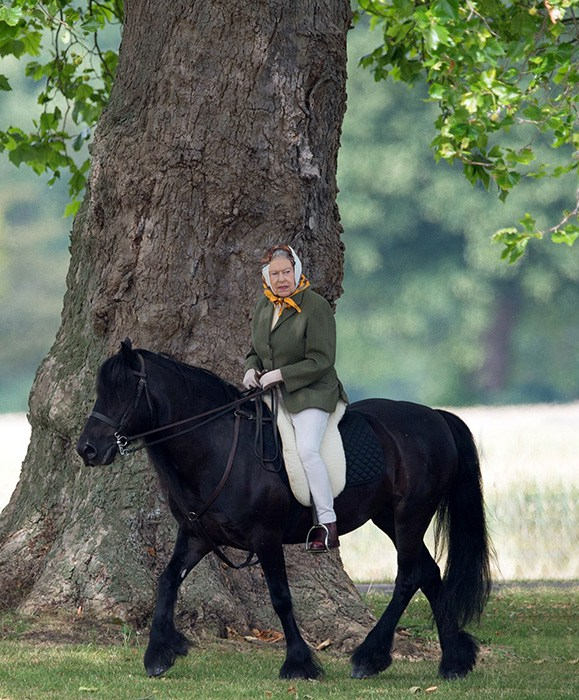 Tacchi A Cavallo Happy Birthday To Her Majesty The Queen