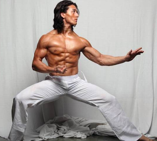 Tiger Shroff Diet Plan