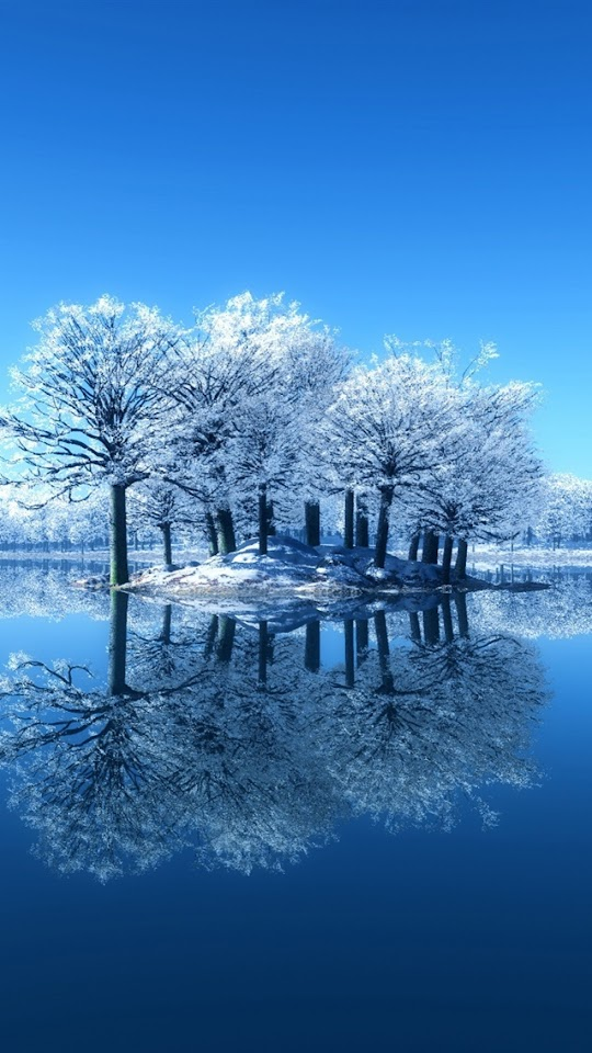 Winter Trees Water Reflections  Galaxy Note HD Wallpaper