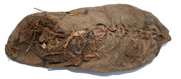 Worlds Oldest Flute Ecosia