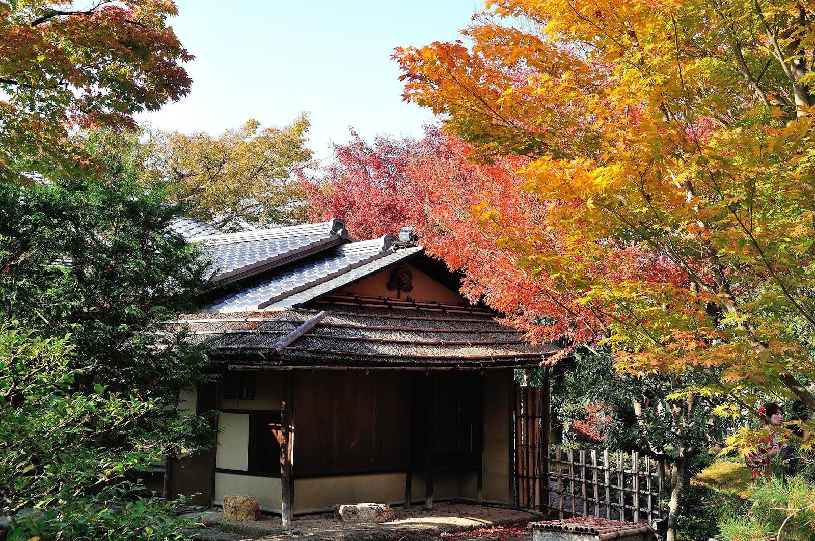 2018關西賞楓~京都高臺寺,長樂寺,円山公園