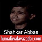 https://www.humaliwalyazadar.com/2018/10/shahkar-abbas-nohay-2019.html