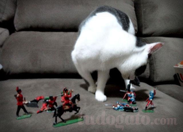 gatos-e-criancas_adestrando-gatos_01a.jpg