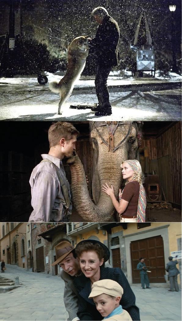 top-3-films-preferes-drame