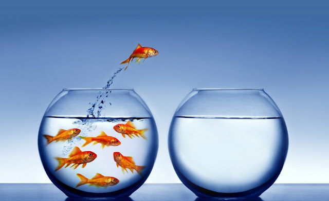 6 Langkah Menentukan Bisnis yang akan Anda Jalankan