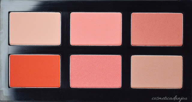 swatches It's Skin Life Color Palette Cheek #Cozy Pop Review