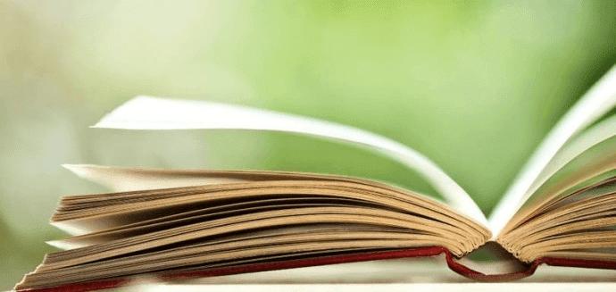 técnicas literárias