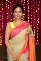 Anu Emanuel Looks Super Cute in Saree ~  Exclusive Pics 020.JPG