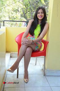 Telugu Actress Prasanna Stills in Short Dress at Inkenti Nuvve Cheppu Press Meet Stills  0174.JPG