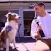 ΔΑΓΚΩΣΕ ΤΟ ΜΙΚΡΟΦΩΝΟ! Πώς αντέδρασε ένας σκύλος στην ερώτηση δημοσιογράφου...