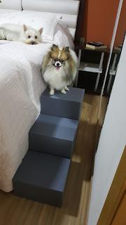 escadas cama alta