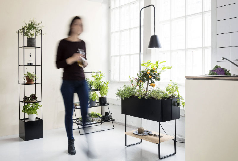 supporti per piante da interno