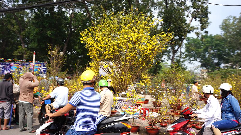 Gia Lai: Chợ hoa Tết 2017 khai mạc ngày 17-1