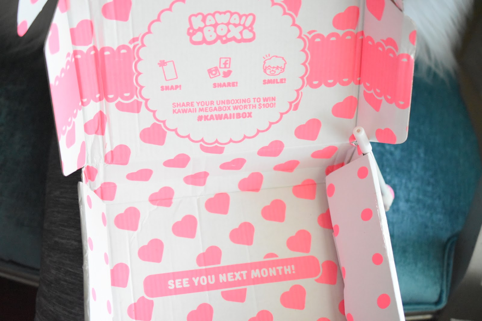 The Cutest Subscription Box Ever! Kawaii Box Review  via  www.productreviewmom.com