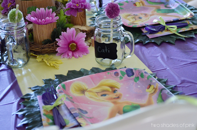 Two Shades Of Pink Tinkerbell Party Diy Ideas