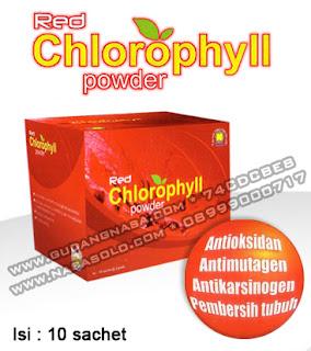 RED CHLOROPHYLL POWDER Rp.100.000,-