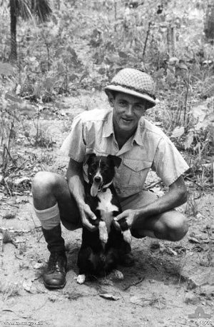 Gunner, the small black and white stray male Kelpie, is one of the unsung heroes of World War II who had the remarkable ability to warn allied air force personnel of the approaching enemy aircrafts, Random Stuff You May Not Know: Four