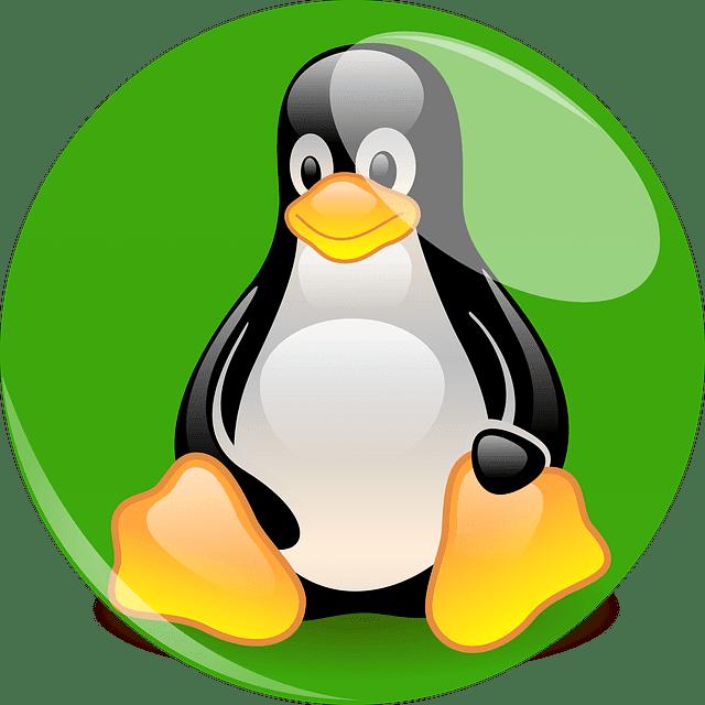 كيفية تثبيت tree المساعد في سطر الأومر لينكس_ Linux ؟   جميع أومر  tree المساعد في سطر الأومر لينكس_ Linux .   شرح أستخدام  tree المساعد في سطر الأومر لينكس_ Linux  .     ما هو  tree المساعد في سطر الأومر لينكس_ Linux ؟