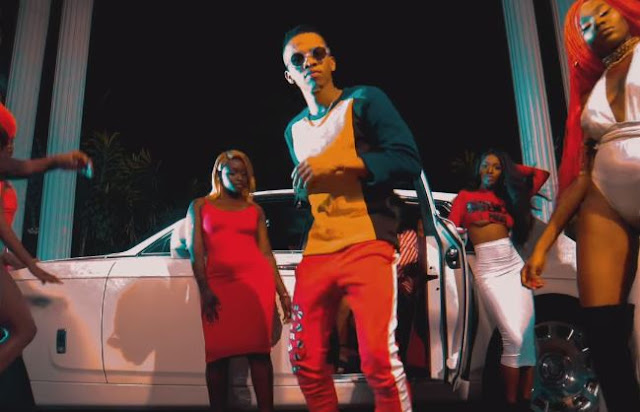 Download video: Tekno – Anyhow