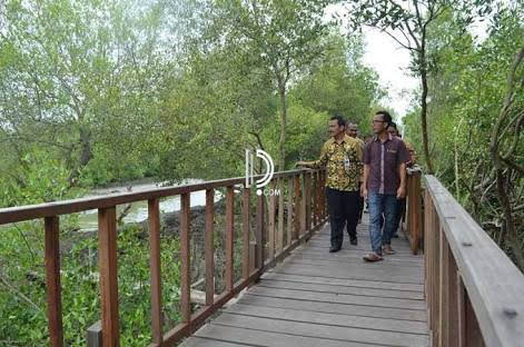 Review Wisata : Hutan Mangrove Ujungpangkah, Calon wisata andalan Gresik