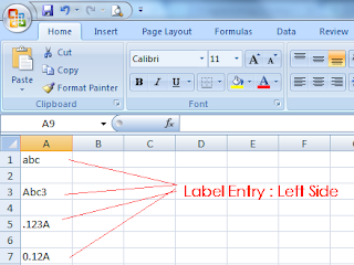 MS-Excel Label entry : Left side align