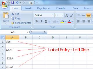 MS-Excel Label entry : Left side align