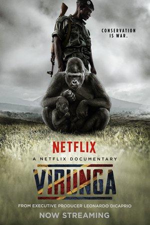 Poster Virunga 2014