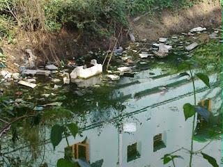 Su Kirliliğinin Nedenleri Nelerdir?
