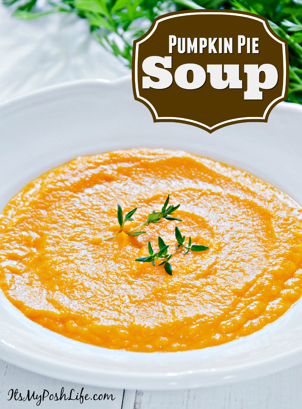 Easy Pumpkin Pie Soup