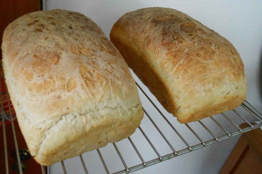 Favorite Oatmeal Bread Photo