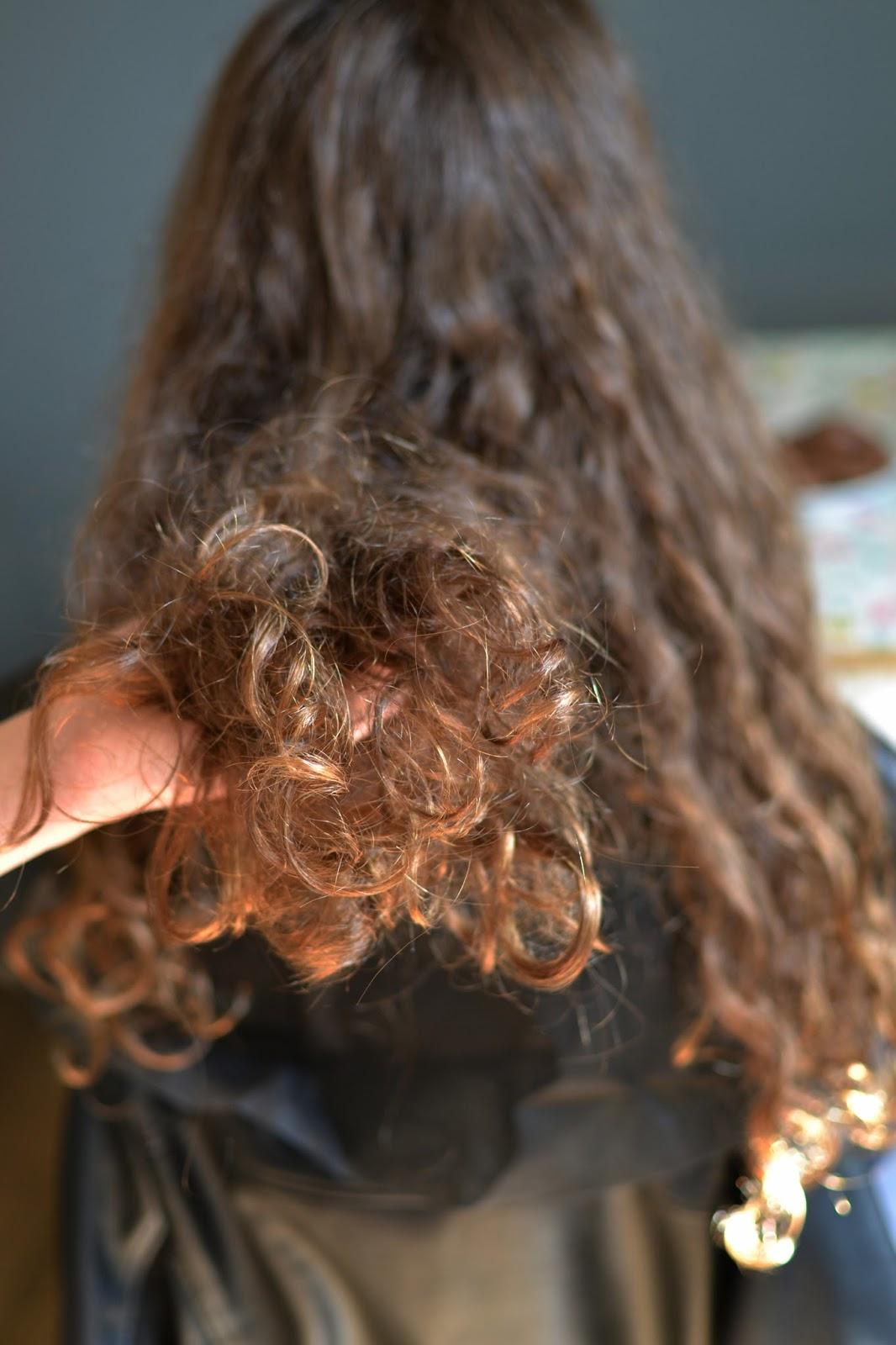 przesuszone kręcone włosy