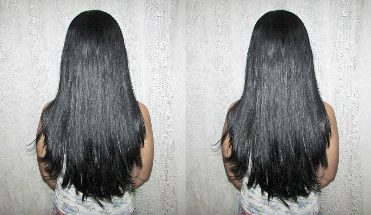 Raiz de bardana contra uma perda do cabelo