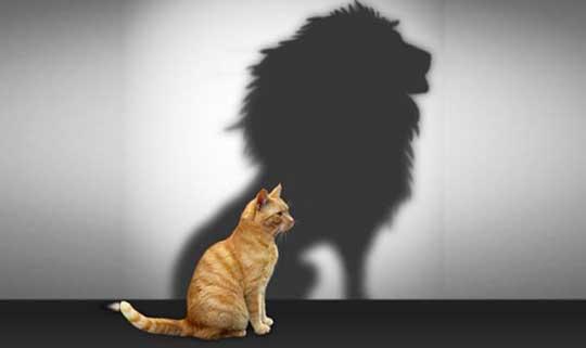 building self esteem