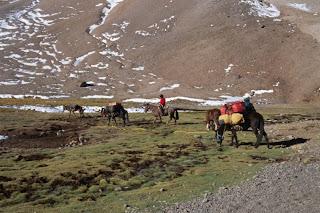 Lastentransport in Piedra Numerada