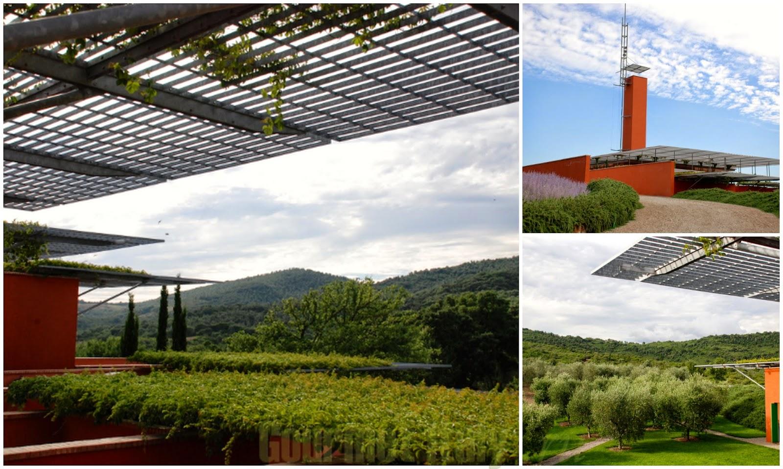 Рокка ди Фрассинелло - винный тур в Тоскане