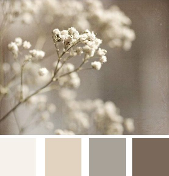Neautral Colors: Ina's Place Invitations & Party Supplies: Invitaciones