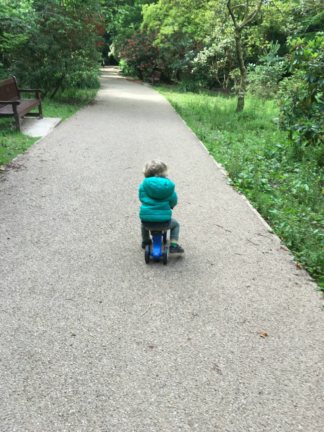 toddler-on-balance-bike-in-the-park