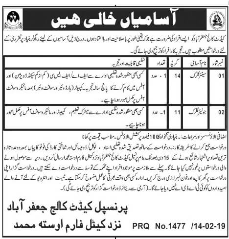 Jobs in Cadet College Jaffarabad Feb 2019