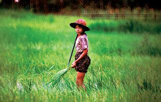 Myanmar working girl