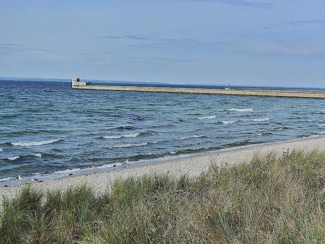 Hel, plaża, gdzie można spotkać foki na Półwyspie